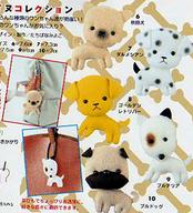B5_dogs
